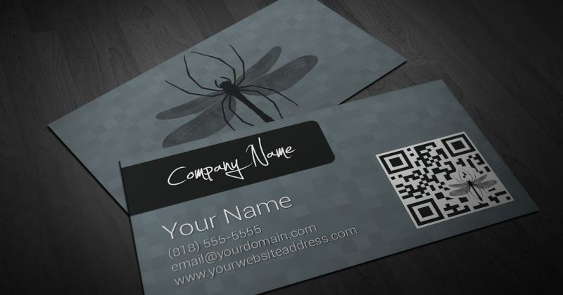 SpiderflyCards